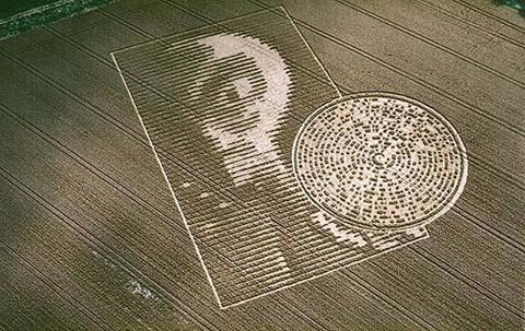 Dấu hiệu kỳ lạ người ngoài hành tinh để lại trên cánh đồng? - Báo Gia Lai điện tử - Tin nhanh - Chính xác