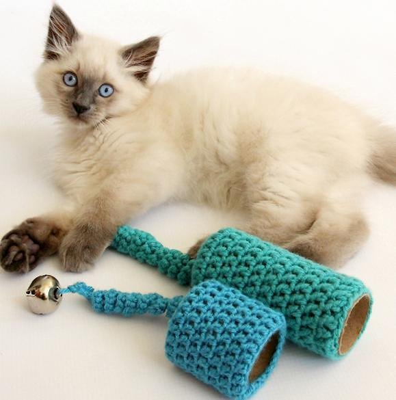 Comprar Acessórios para Gatos Online